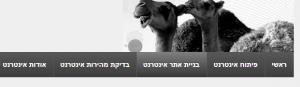 המחשה של גרדיאנט באינטרנט ישראל